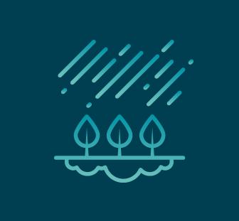 Jardin de pluie réalisé par Korz